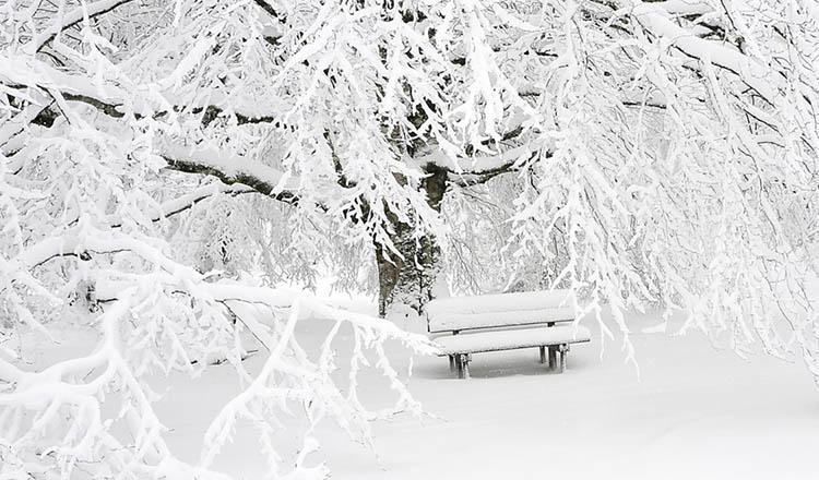 Ninge ca în povești în Romania. Stratul de zăpadă depășește 20 de centimetri.
